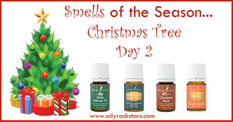 what type of christmas tree smells the best smells of the season day 2 tree rockstars