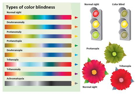 types of color blindness accessibility testing color blindness