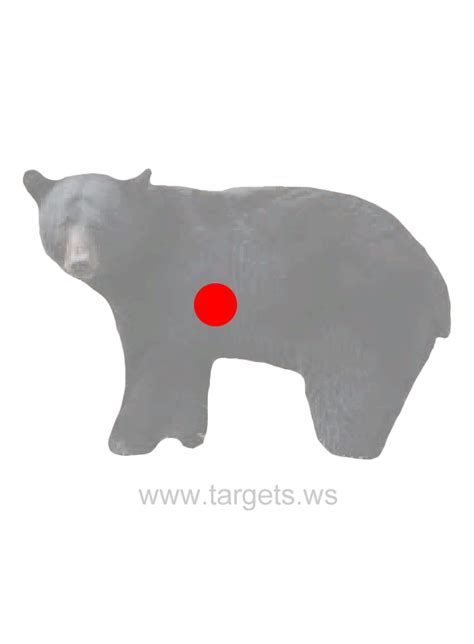 printable targets animal targets print your own animal shooting targets