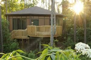 tree house villas saratoga springs resort magical