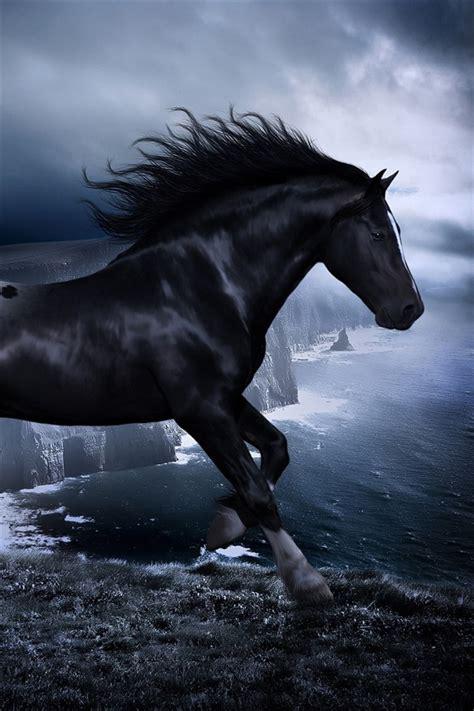 wallpaper iphone 6 horse 暗闇の中で馬 iphoneの壁紙 640x960 iphone 4 4s 壁紙ダウンロード