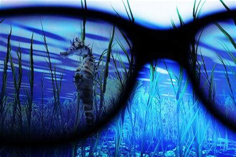 imagenes hot en 3d alerta el 3d es nocivo para la vista