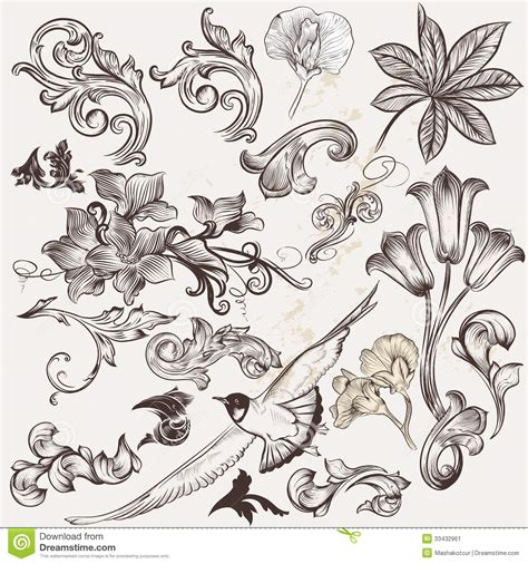 vector set of vintage swirls and hand drawn elements stock