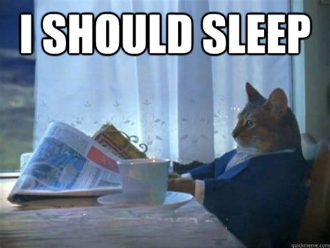 Sleeping In Meme - i should sleep morning realization newspaper cat meme