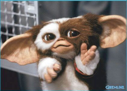 the world s best photos of gremlins and gizmo search gizmo gremlins search and