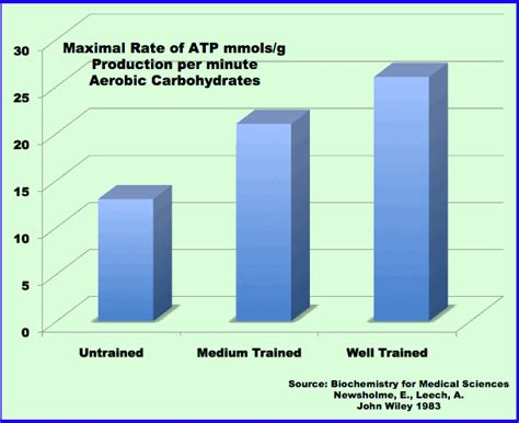 carbohydrates in atp production lactate testing for triathlon why does every