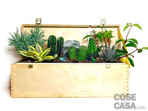 cassetta legno piante grasse una composizione facile cose di casa