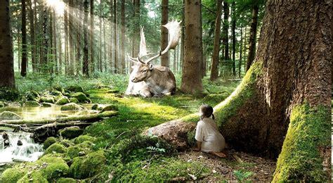 Animals Wallpaper Free Nature