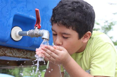 imagenes de jirafas tomando agua y t 250 191 sabes qu 233 agua est 225 s tomando el expreso de ceche