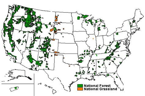 map us national forests protect and expand us forests to help fight climatechange