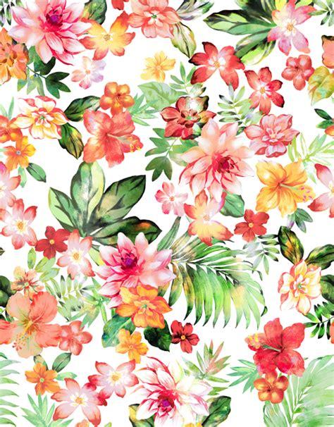 imagenes flores pinterest fondos fondos pinterest fondos