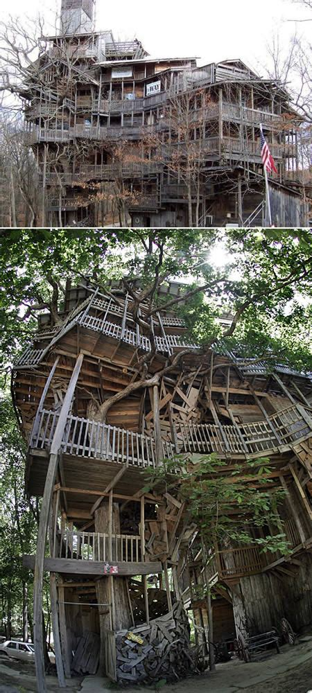look at these amazing tree houses pictures do not you a maior casa na 225 rvore j 225 constru 237 da plugcit 225 rios
