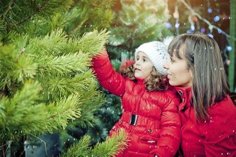 christmas trees irvine plan a day out promoting family time in orange county by free or almost free