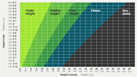 healthy weight for 5 6 female in stones berry blog