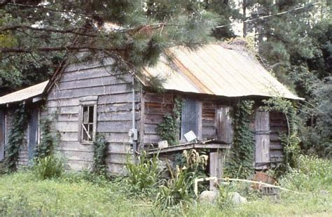 Santee State Park Cabin Rentals by Santee River Sc Cabins
