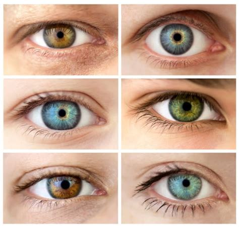 eye color and personality the ties that bind eye color and personality vision shop