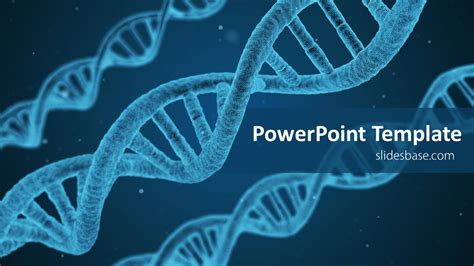 what is a template in dna success genetics dna powerpoint template slidesbase