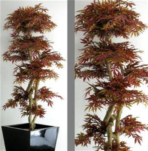 piante da giardino alto fusto piante artificiali lvroses