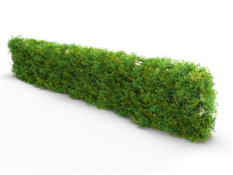 realistic bush hedge bundle by teddpermana 3docean