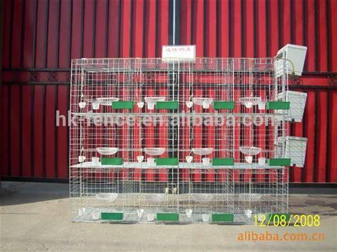 Jaring Alas Kandang quail kabel jaring desain kandang quail kandang dan air