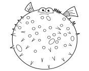 bloat finding nemo coloring page nemo coloring pages cartoon coloring pages