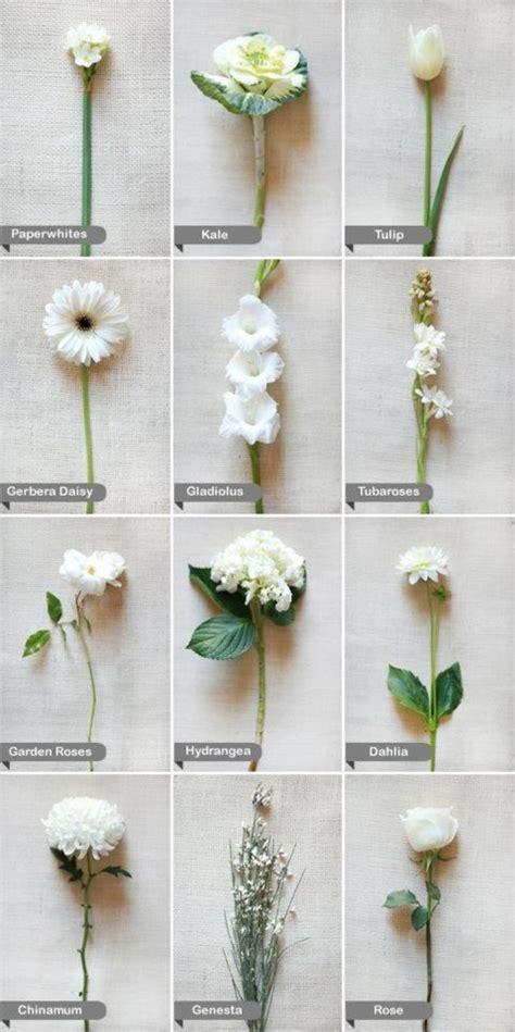 All White Wedding Flower Arrangements by 25 Best Ideas About Flower Names On Flower