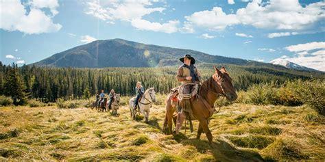 Search Alberta Horseback In Canadian Rockies Banff Lake Louise Tourism
