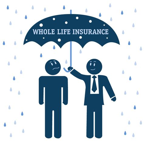 whole life policy whole life insurance related keywords whole life