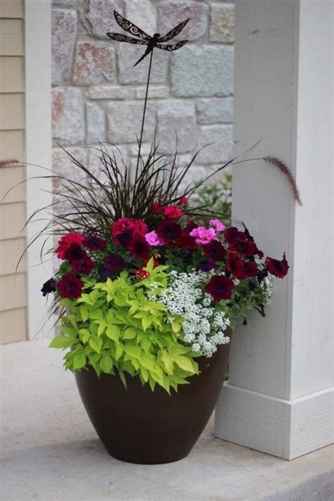 design flower containers pinterest the world s catalog of ideas