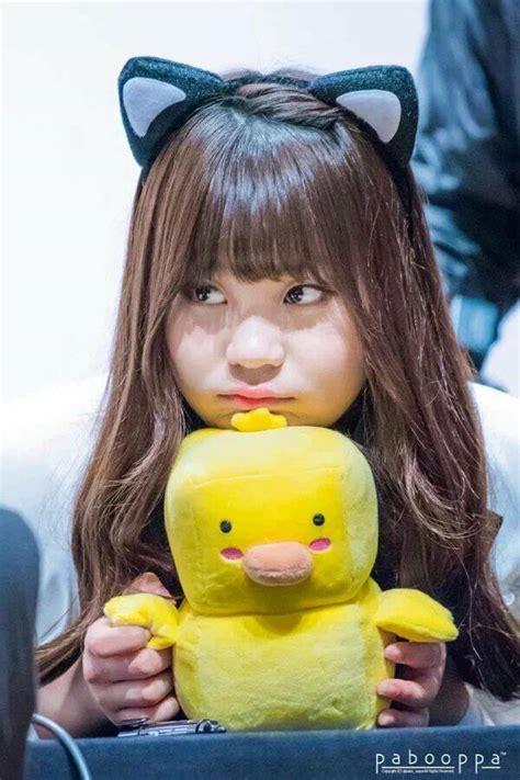 Bando Icon Kucing 3 jual bando kucing korea ala umji gfriend fairyranz