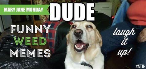 Funny Weed Memes - funny marijuana memes the nug