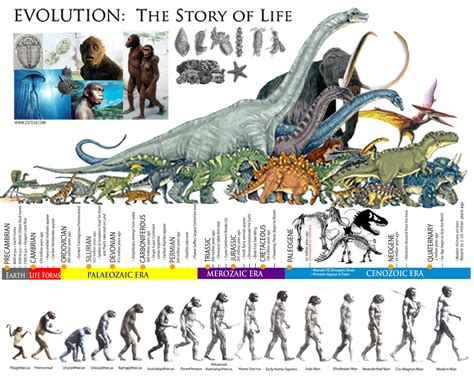 libro the story of world til that in the history of the earth we re closer to tyrannosaurus rex than t rex is to the