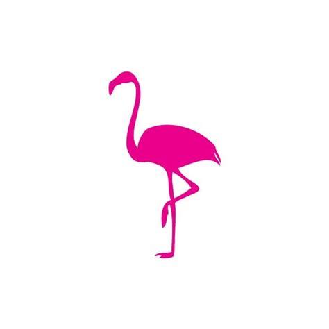 flamingo animal kingdom pink flamingo pinterest