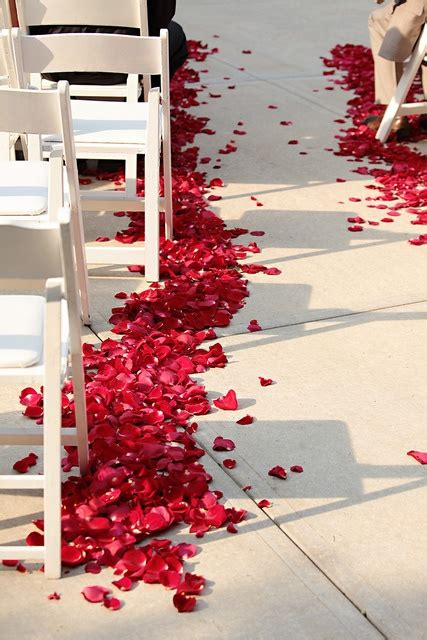 Wedding Aisle Runners Johannesburg by 17 Best Images About Petal Wedding Aisles On