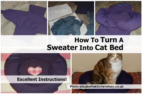 How To Get Cat Out Of Mattress by Diy Cat Bed Out Of Sweater Autos Weblog