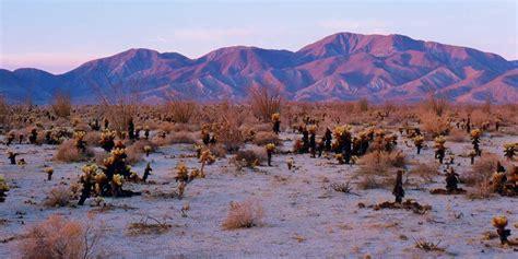 anzo borrego borrego springs visit california