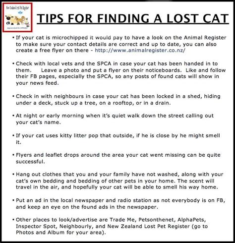 finding a lost links to information about siberian cats seacliffe siberians