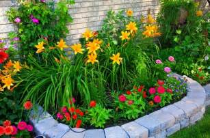 garden flowers and plants flower garden plans