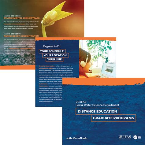 Uf Mba Vector by Programs U003e Brochure U003e Office Of International