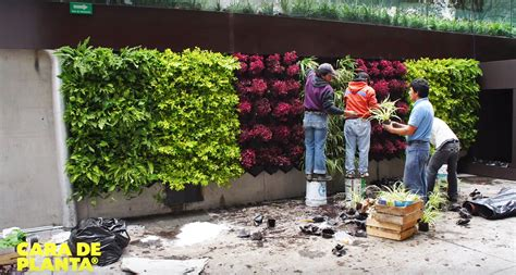 how to build your own vertical garden cara de planta is a diy kit that lets you build your own