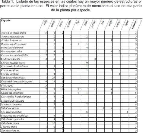 tabla de numeros mayas del 1 al 5000 labocommx tabla de numeros mayas del 1 al 5000 labocommx todos los