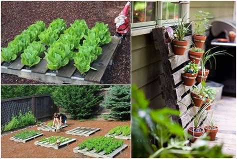 simple diy garden projects   arro home