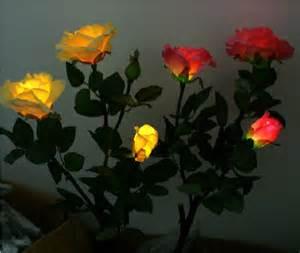solar led landscape lights best new gift rose flower solar led light lamp solar