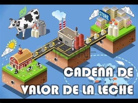 cadena productiva agroindustrial cadena de valor de la leche cadena agroindustrial youtube
