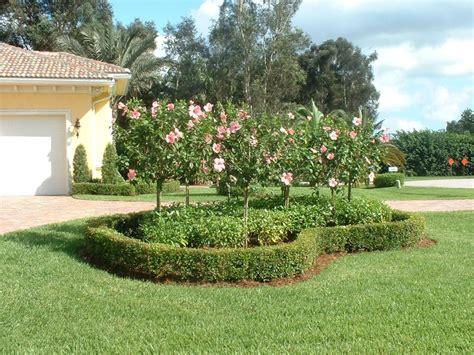 15 best landscaping images on pinterest florida