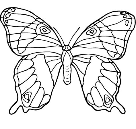 beautiful coloring pages of butterflies beautiful butterfly coloring pages butterflies coloring