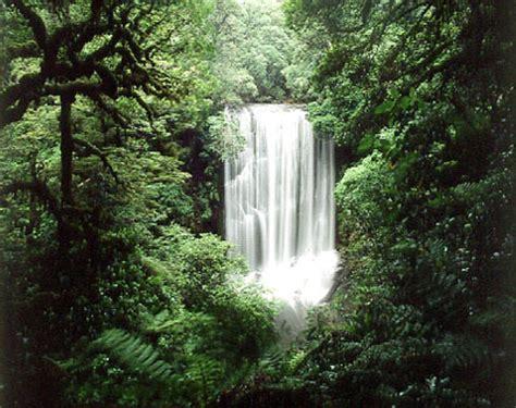korokoro falls te urewera national park by craig potton