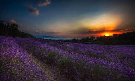in provenza vdp fotografia viaggio fotografico in provenza