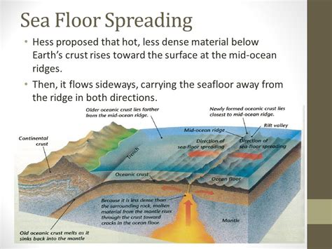 Sea Floor Spreading Hess by The Dynamic Interior Of The Earth Ppt