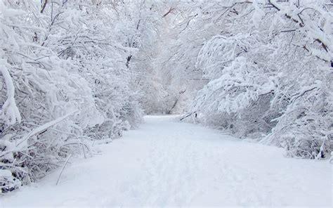 Free 3D Winter Desktop Wallpaper - WallpaperSafari 3d Wallpaper For Winter
